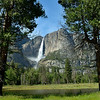 Yosemite Falls drop over 2400 feet down into the valley
