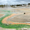 Porcelain Trail, Norris Geyser Basin<br /> Yellowstone