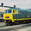 Probably one of the most interesting assortment of locos was seen at The Gloucester Rail Open Day in 1991.<br /> Here Hymek D7017 shares the yard with Class 26, 26005